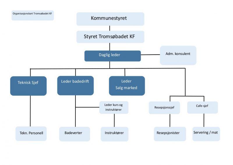 Organisasjonskart3